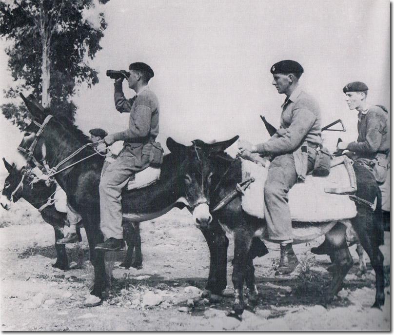 The Royal Horse Guards Donkey Patrol