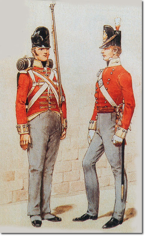 14th Regiment Of Foot The Prince Of Wales S Own