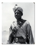 Captain A Gibb, DSO, DCM